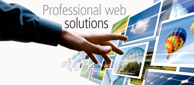 professional web design development solutions Sydney